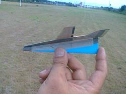 Ts290016